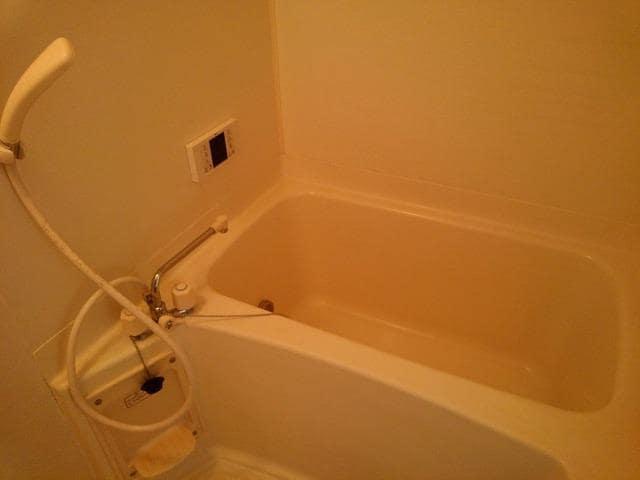 アミティハイツ 02010号室の風呂