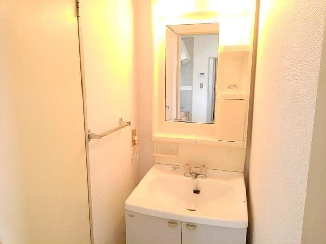 アミティハイツ 02010号室の洗面所