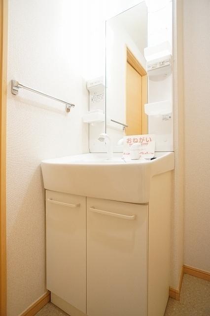 メゾンプレミールA 01020号室の洗面所