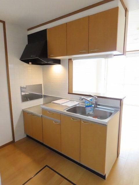 ガーデンスクエア セレシアF 01010号室のキッチン