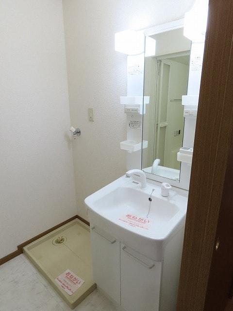 ガーデンスクエア セレシアF 01010号室の洗面所