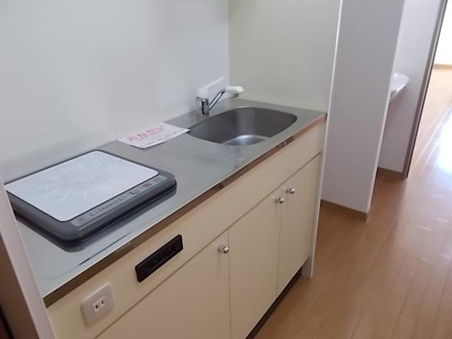 パラス卯兵衛 402号室のキッチン
