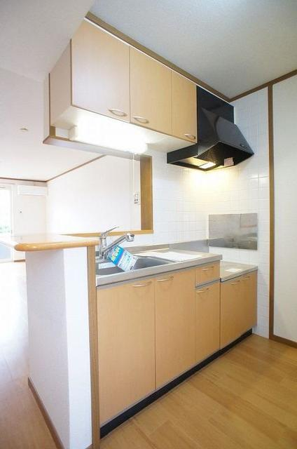 セントラルコート 01020号室のキッチン