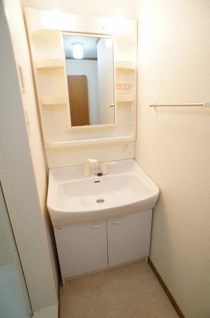 セントラルコート 01020号室の洗面所