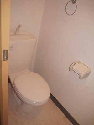 カーサ オーラ・ソーレ 403号室のトイレ