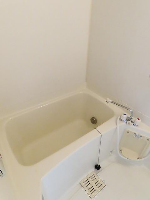 メゾン・ソレイユ A 01010号室の風呂