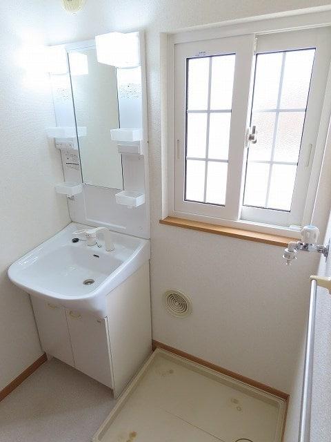 メゾン・ソレイユ A 01010号室の洗面所