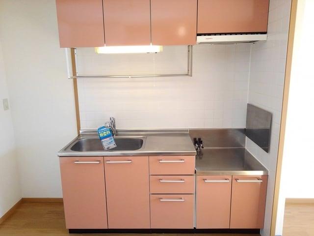 ポリッシュ・メゾン B 02020号室のキッチン