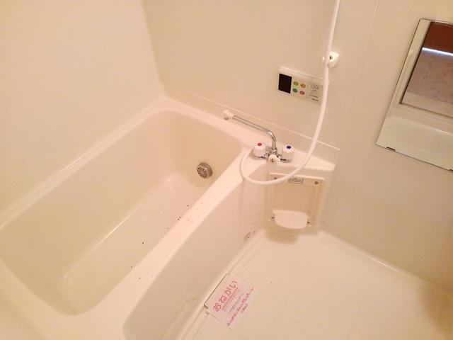 ポリッシュ・メゾン B 02020号室の風呂