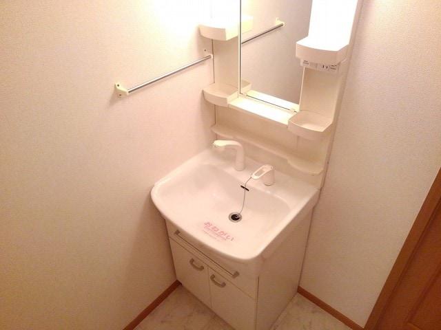 ポリッシュ・メゾン B 02020号室の洗面所