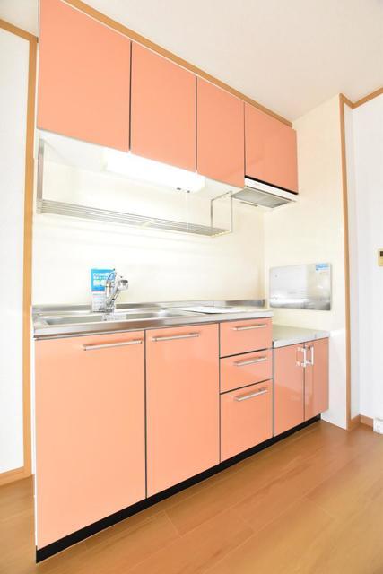 アヴァンシアA 01030号室のリビング