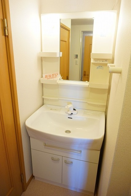 サニーフィールドからたちA 02010号室の洗面所