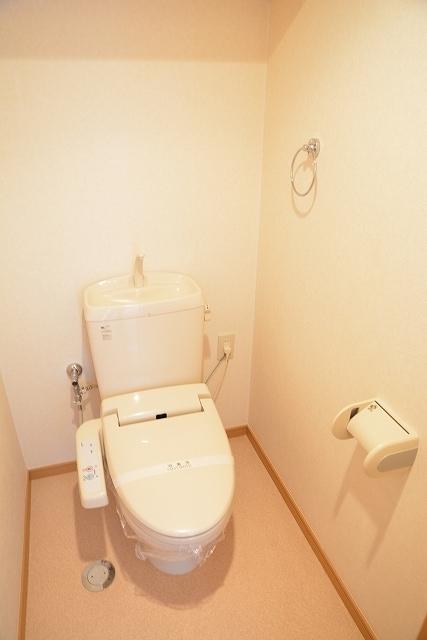 サン ハウス 401号室のトイレ