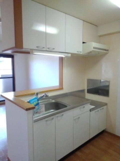 サン ビオラ 01030号室のキッチン