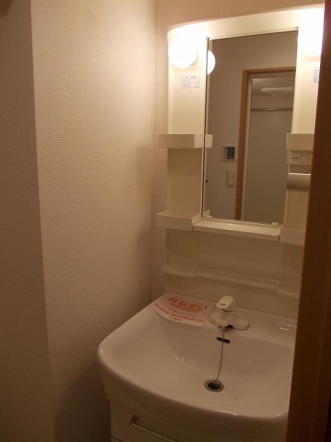 ヴィラ清寿 402号室の洗面所