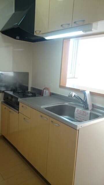アベンシス5 02010号室のキッチン