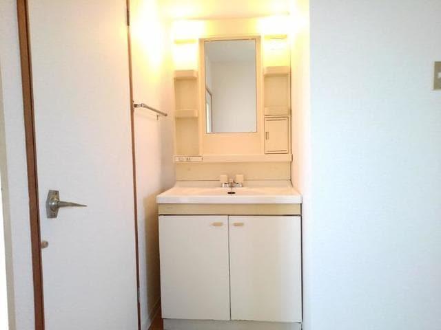 エステートKU 201号室の洗面所