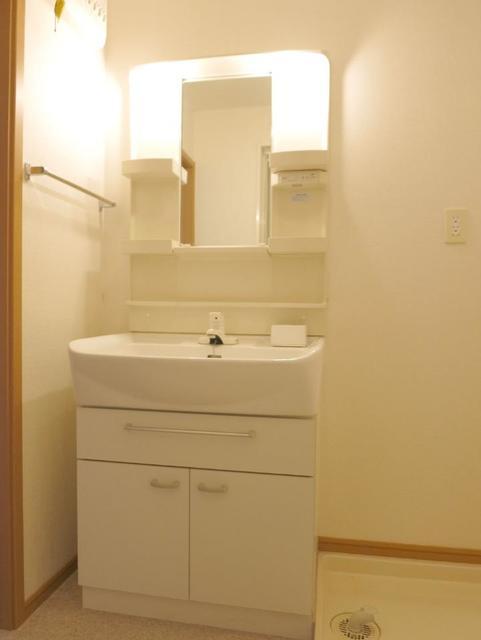 サニーフォレストC 201号室の洗面所