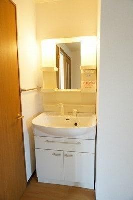 ロッジ・カントリー 02030号室の洗面所