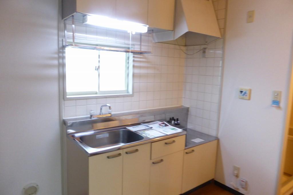 アクティブ田沢Ⅰ 01020号室のキッチン