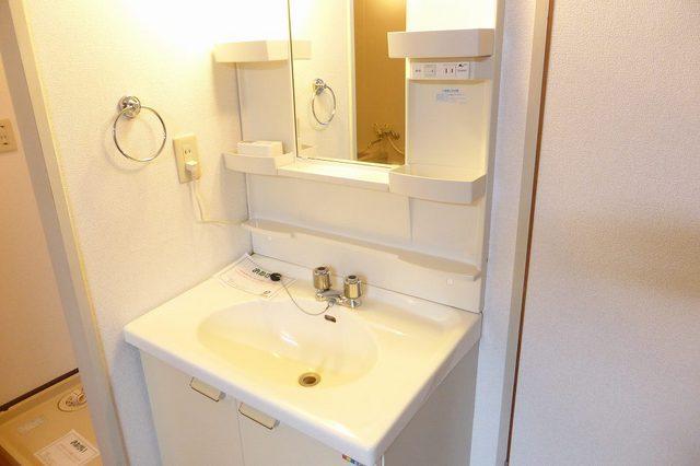 アクティブ田沢Ⅰ 01020号室の洗面所