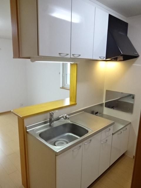 アイリス柿本B 205号室のキッチン
