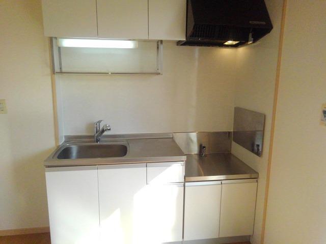 ロイヤルエステート神明A 01020号室のキッチン