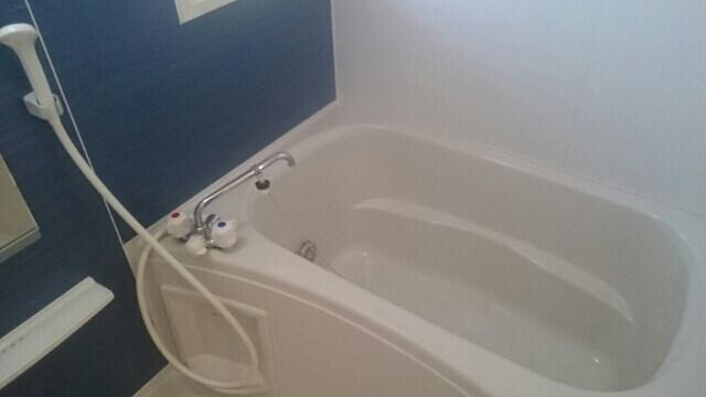 アルコ・イ-リス 02010号室の風呂
