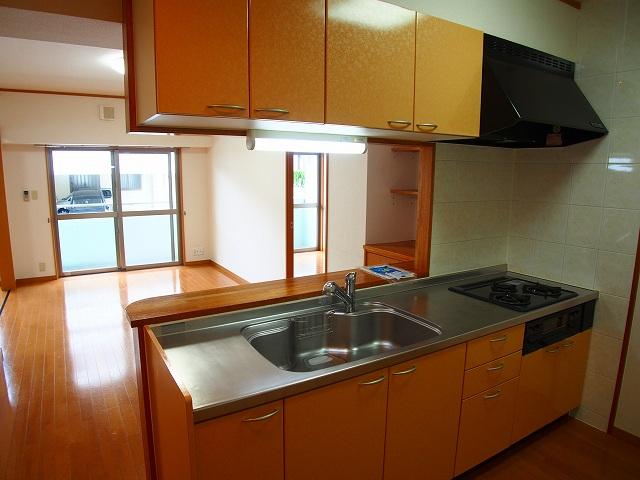 ヴィラ サンリット 101号室のキッチン