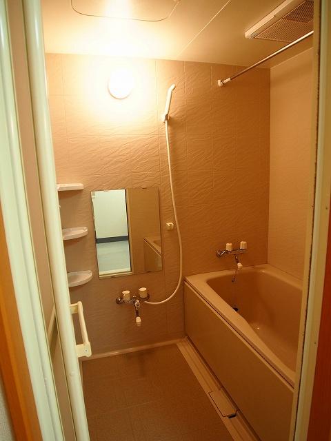 ヴィラ サンリット 101号室の風呂