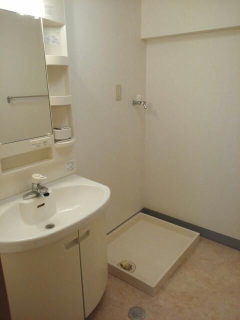 クール グラン ヒガ 101号室の洗面所