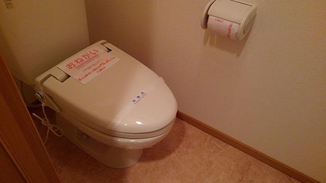 ブランクレール 201号室のトイレ
