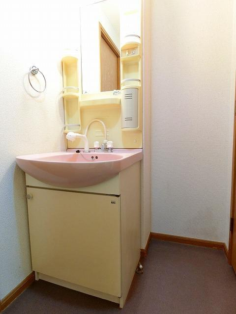 サンリリィ 101号室の洗面所