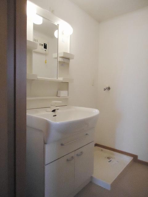 メゾン・アムール 201号室の洗面所
