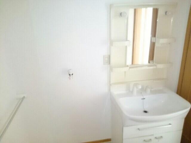 カーサ マンダリーネ 01010号室の洗面所