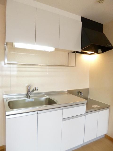 ロイヤルランド泉 303号室のキッチン