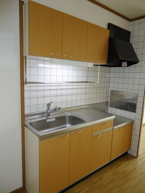 ネオメイト21 B 202号室のキッチン