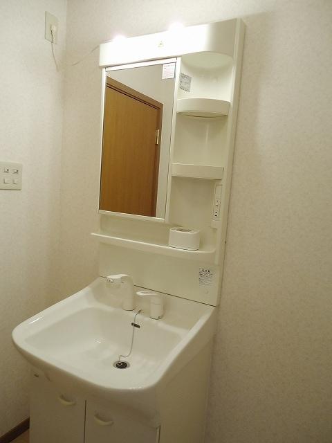 ネオメイト21 B 202号室の洗面所