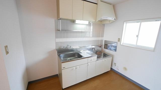 ニューシティ大瀧C 02020号室のキッチン