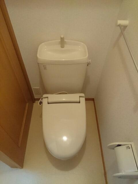 パール メゾン Ⅱ 01030号室のトイレ