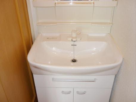 ウイステリア A 01020号室の洗面所