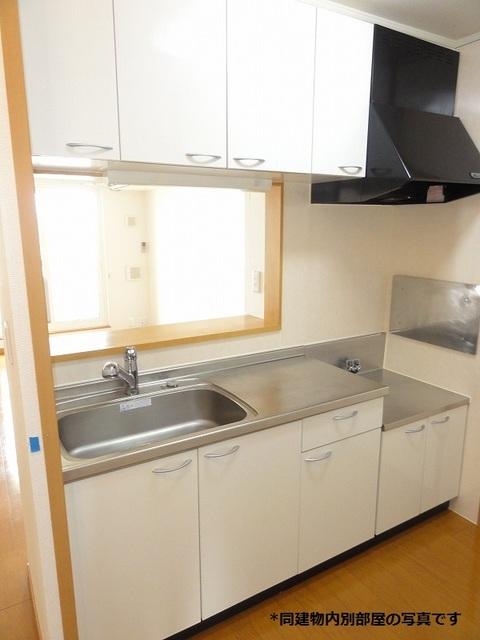 プラシードST 203号室のキッチン