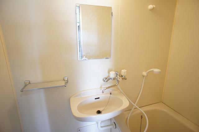 グリーンハイツ 01030号室の洗面所