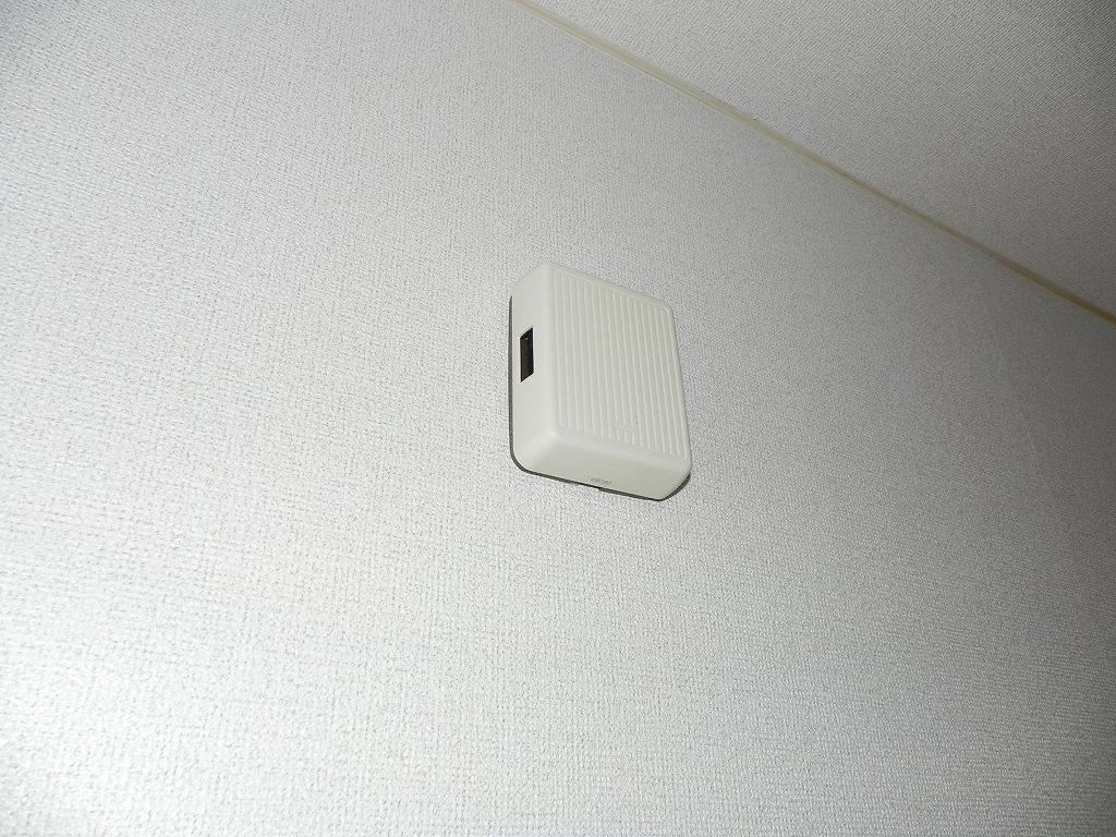 グリーンハイツ 01030号室のセキュリティ