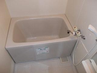 FLAT L・M Ⅰ 01030号室の風呂