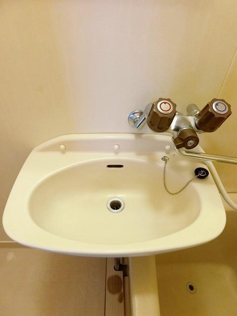シティハイツ中島 01020号室の洗面所