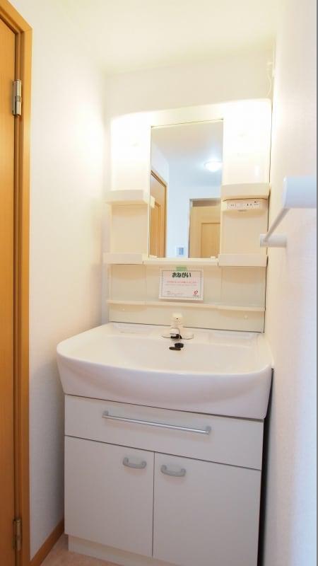 サニーフィールドからたち B 02020号室の洗面所
