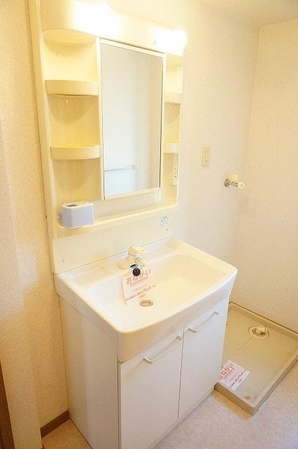 オーブリーS・K B 02010号室の洗面所