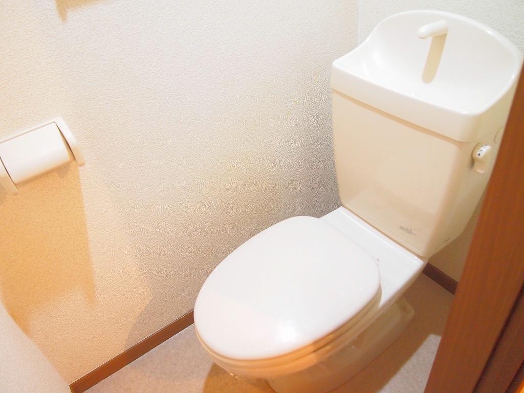 カーサ・リオン 102号室のトイレ
