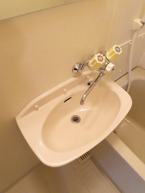 アーバンヒルズ 02050号室の洗面所